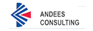 Andees Consulting